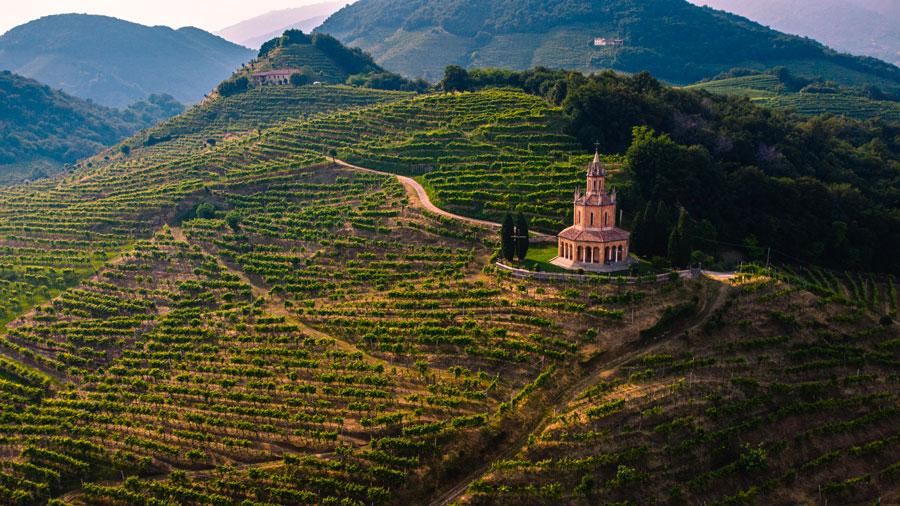 Curiosità sul Prosecco | Doreca distribuzione vino